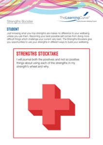 Strengths Booster Strengths Stocktake