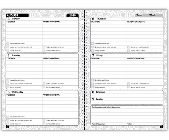 Special Needs Planner – example 1