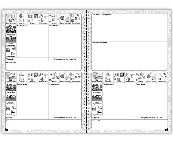 Special Needs Planner – example 4